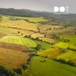 DOT – D'Origine Toscana